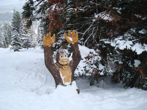 Monkey in the stash at northstar