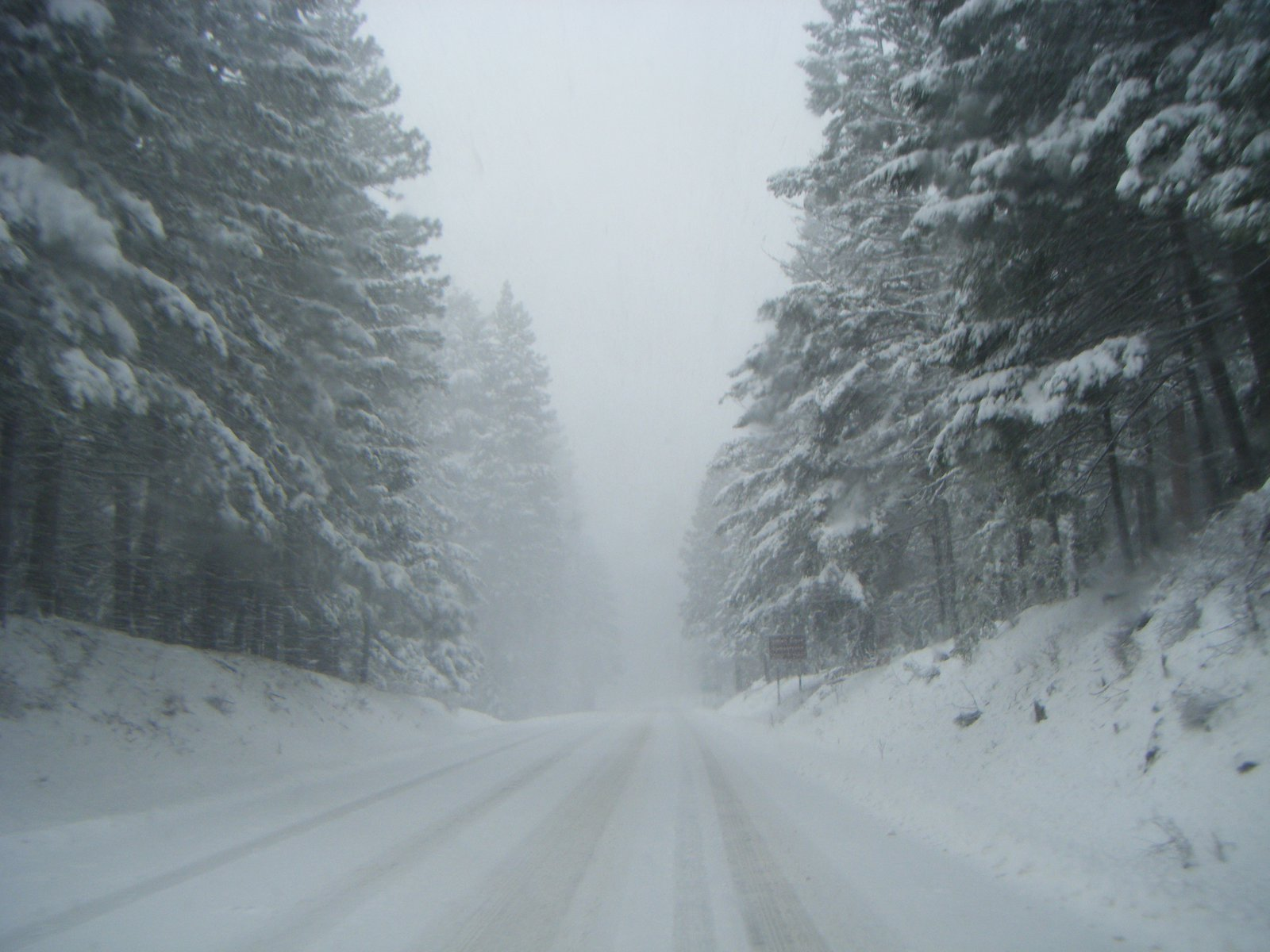 Drive to White