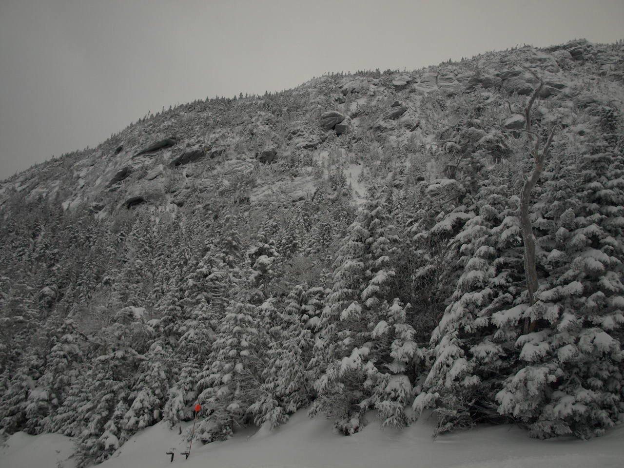 Stowe Winter '08
