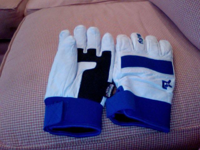 Switch Gloves