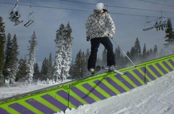 Early season boreal