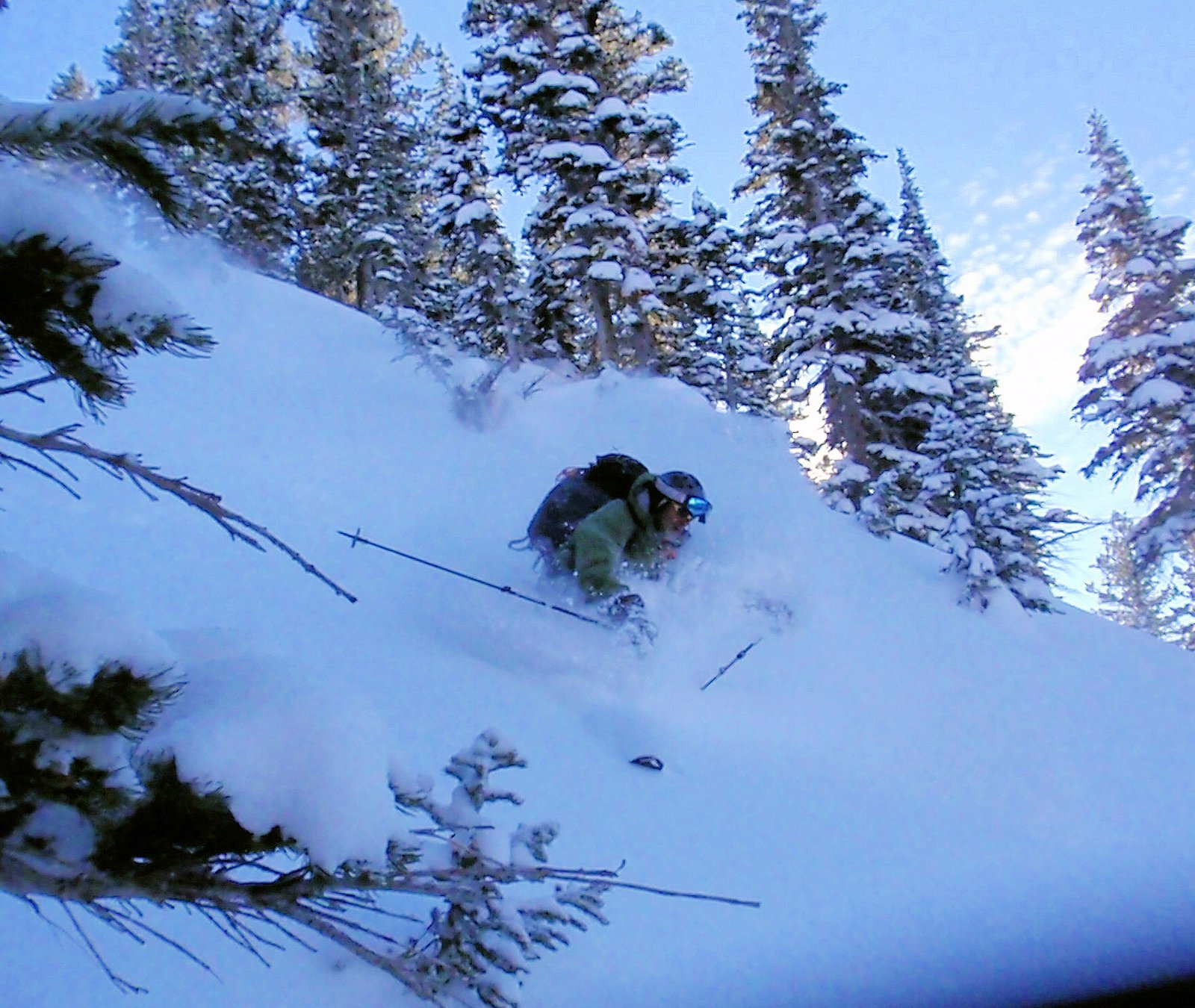 Wasatch pow