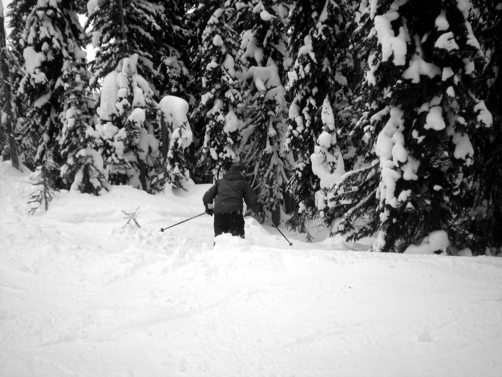 Going into Glades