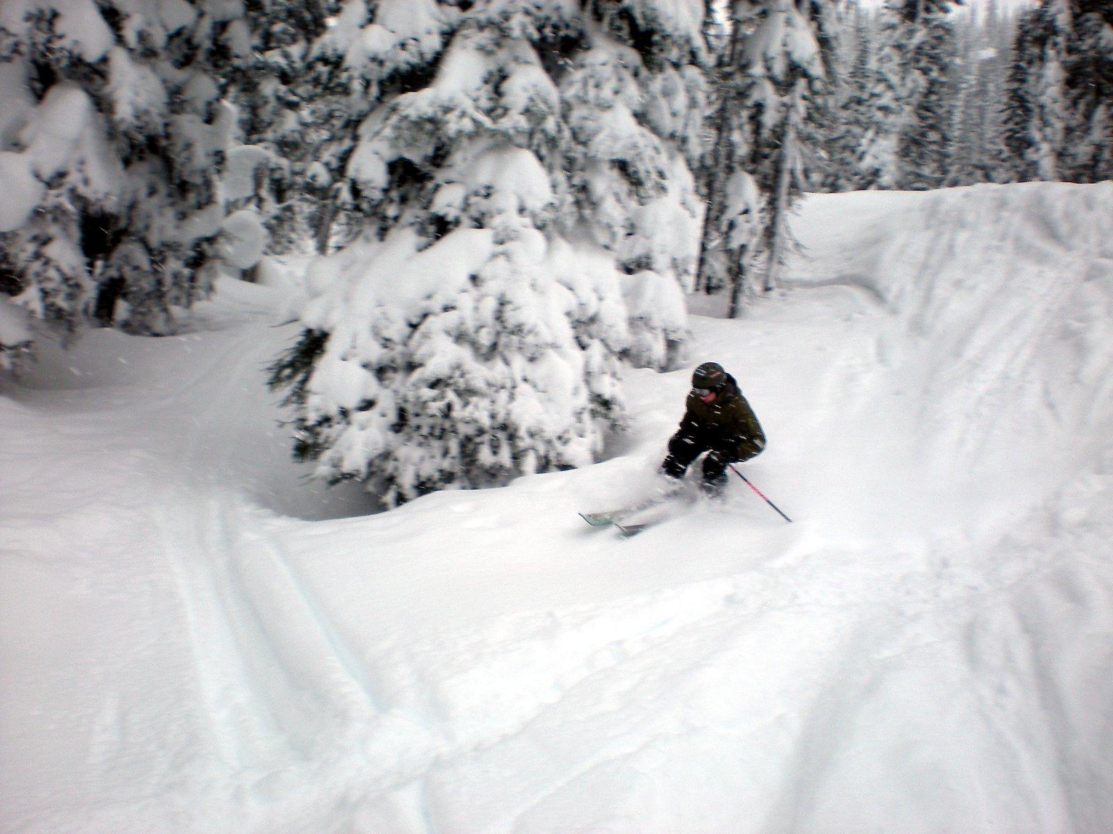 Skiing Bye.
