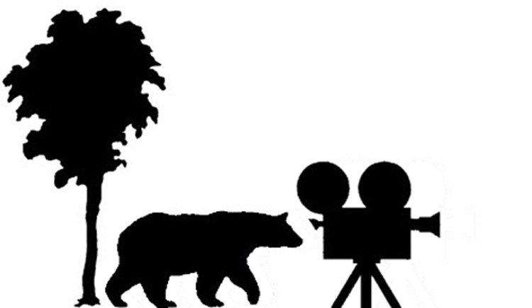 Birch Bear Films