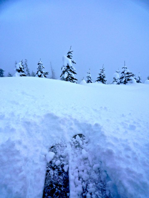 The Start to Some Backcountry Pow