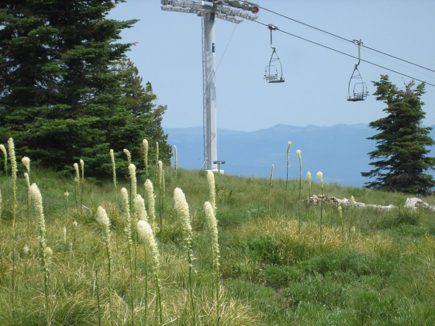 Construction at Schweitzer Mountain Resort, Summer 2007 - 8 of 8