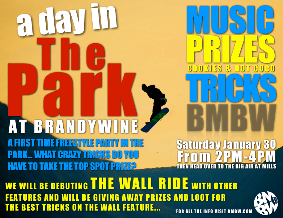 A Day in The Park Flyer