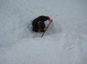 Fuck shoveling