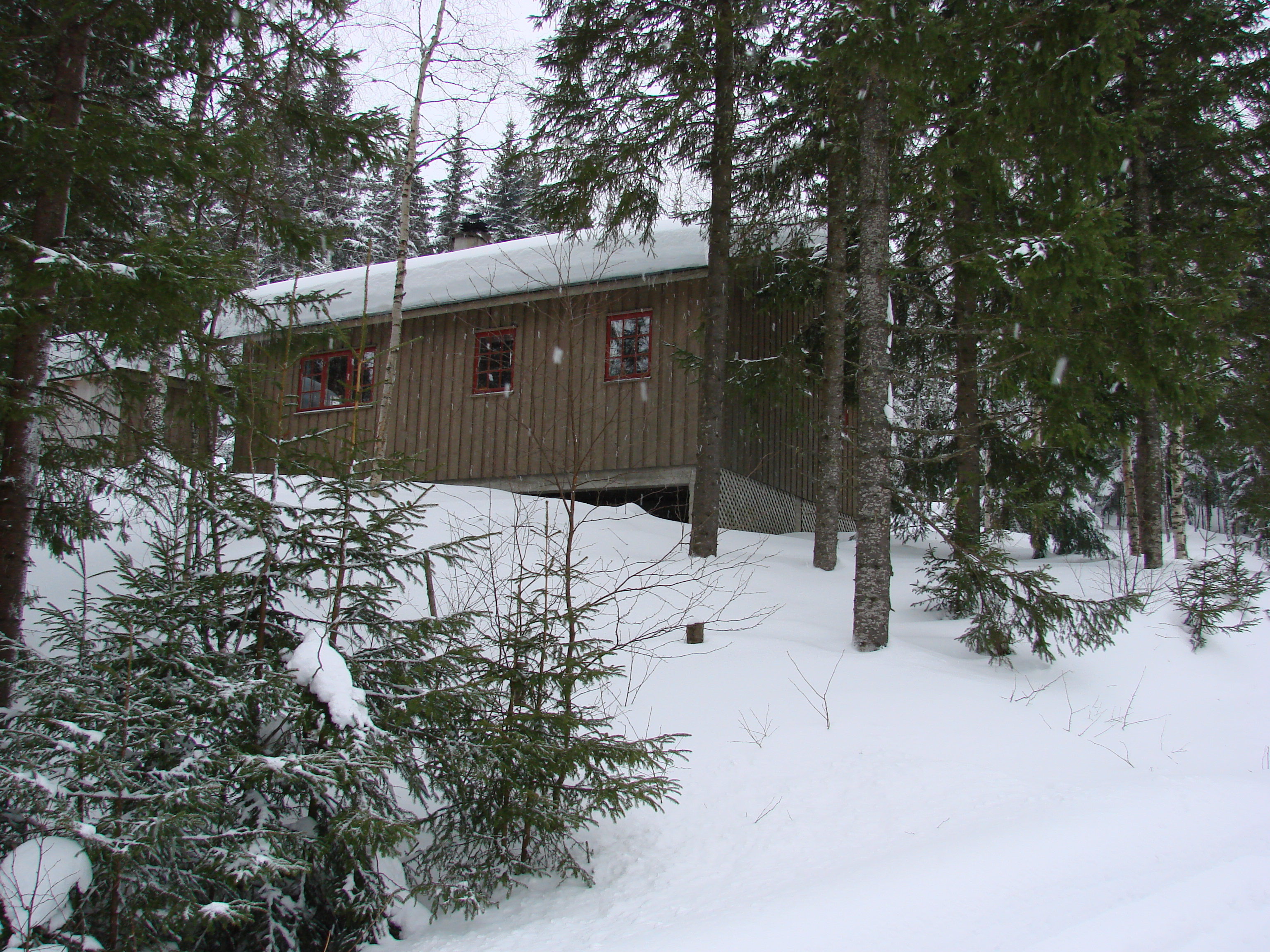 My cabin in the mountains
