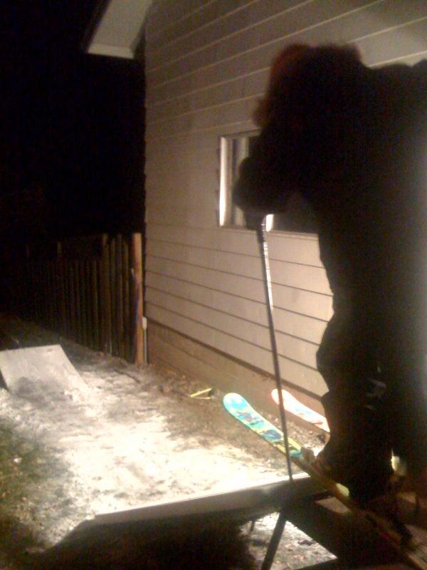 The back yard setup