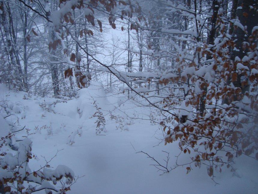 Ski and more in Krkonose - 3 of 6
