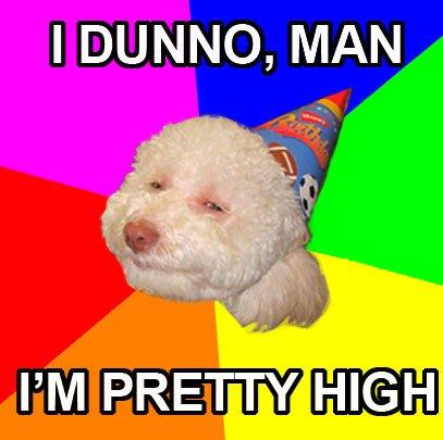 Stoned Birthday Dog