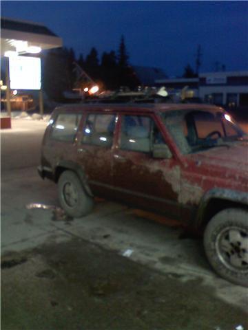 Moooo jeep