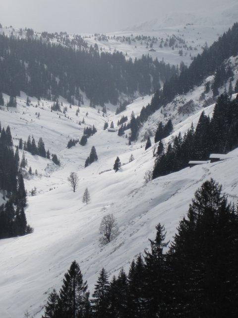 Valley in Kitzbuhel