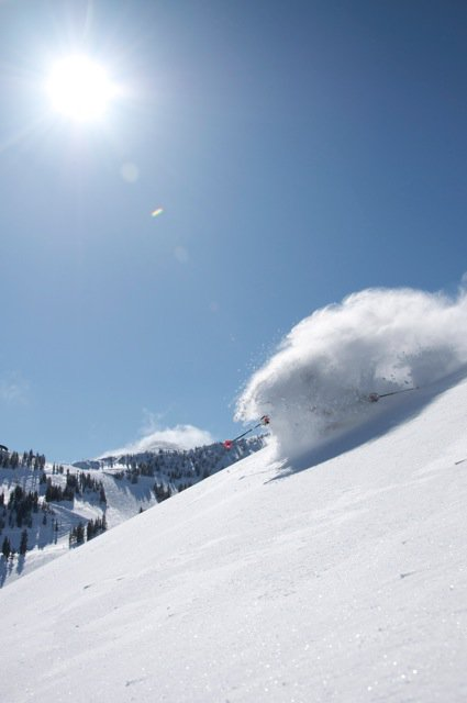 Pow Turns at Alta