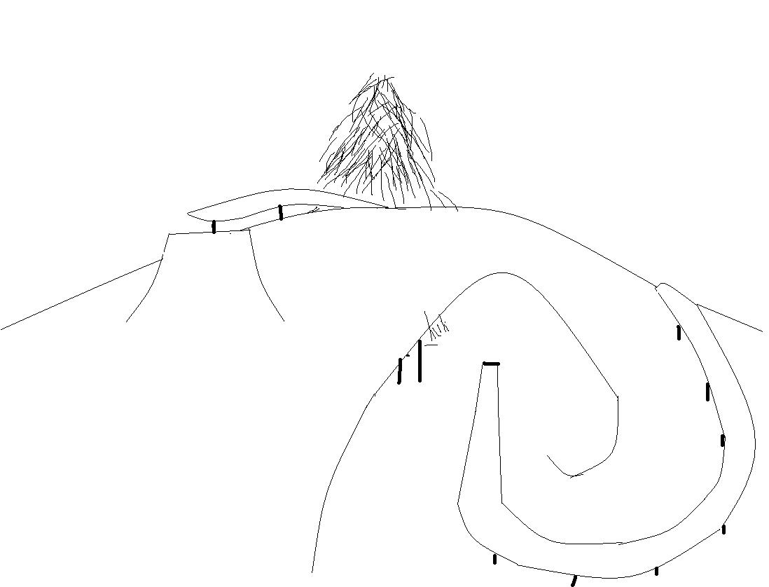 Pig Tail Rail