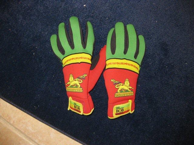 Gloves fs