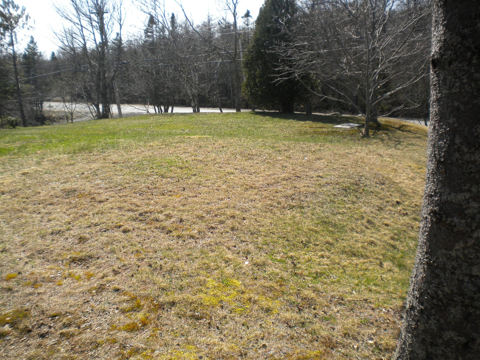 Building a Backyard Setup; Start to Finish. - Location