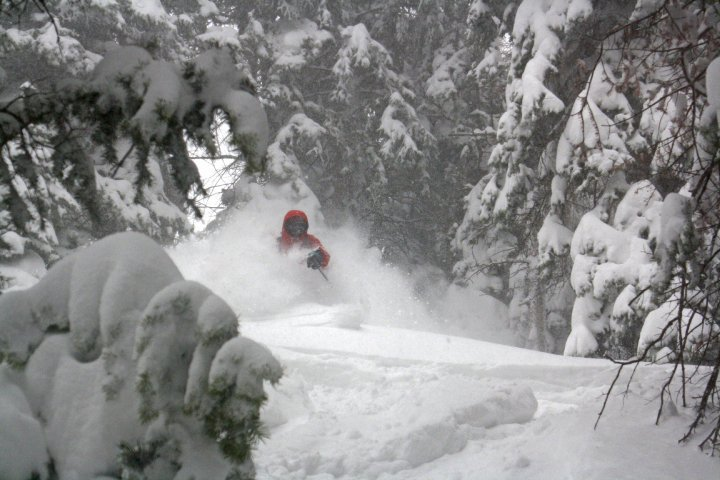 Canyons Powder