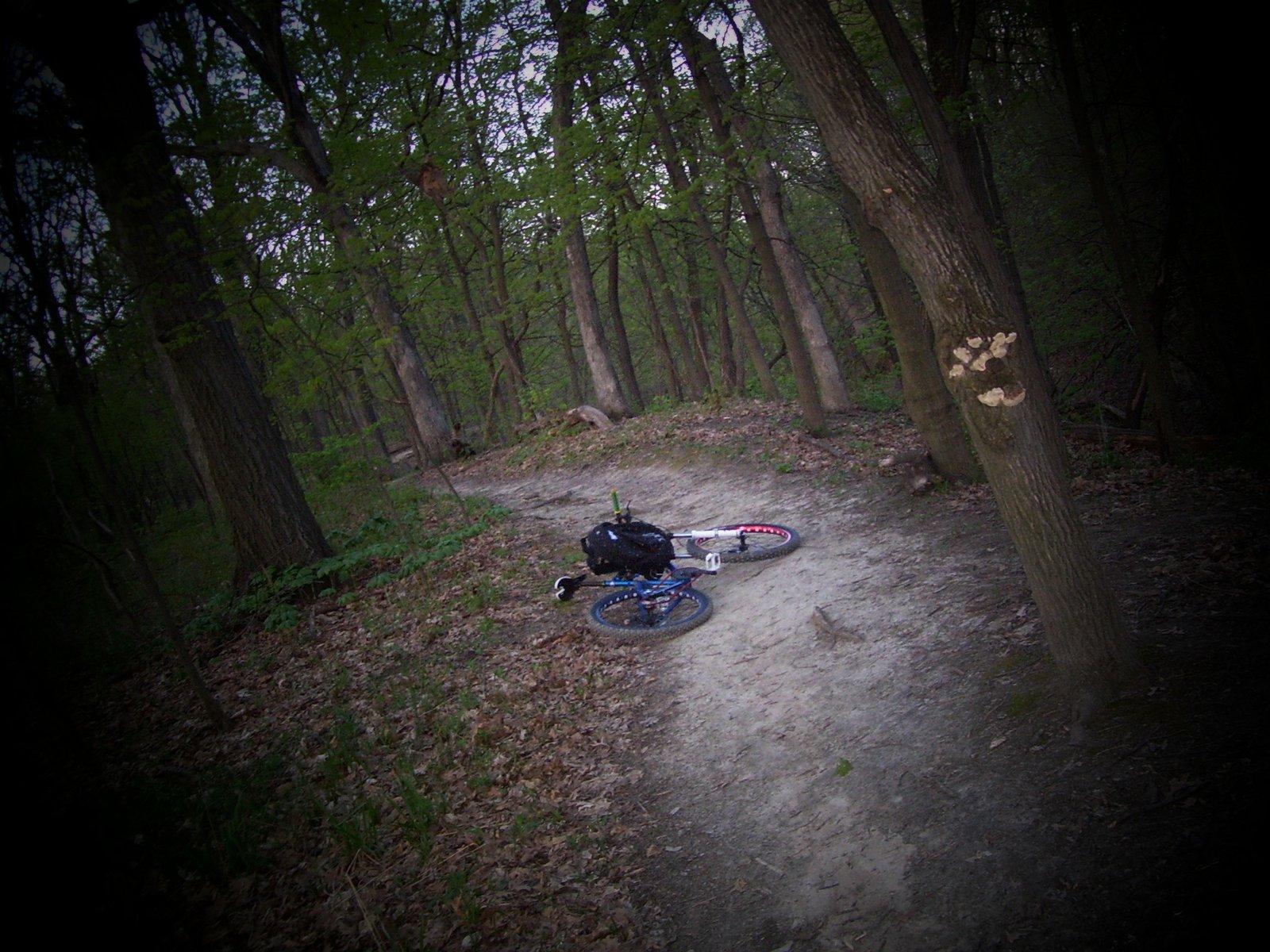 Pretty scenic trails alot of fun