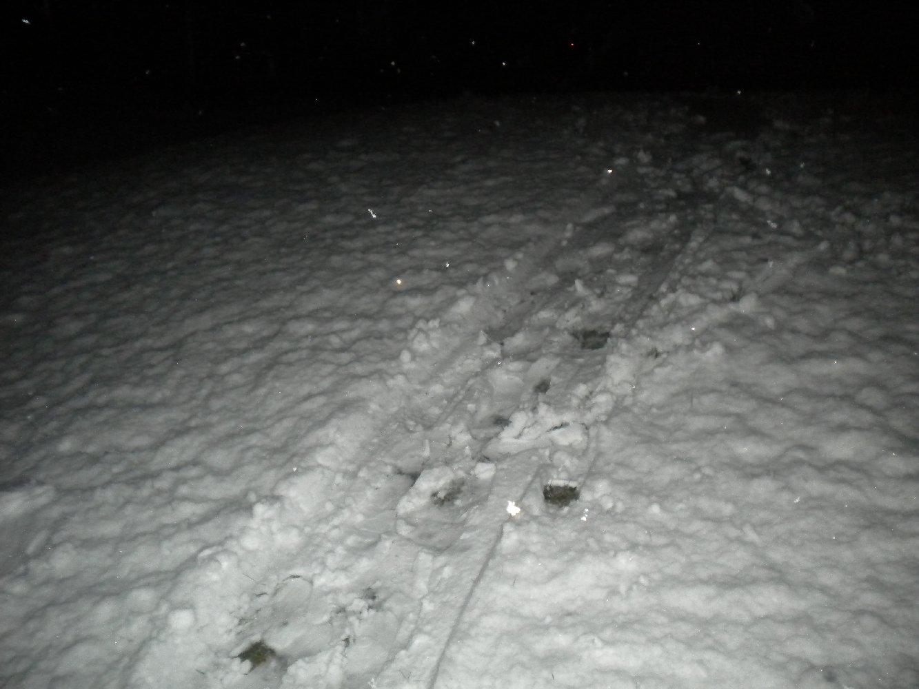 Backyard Skiing on April 18th - 8 of 27