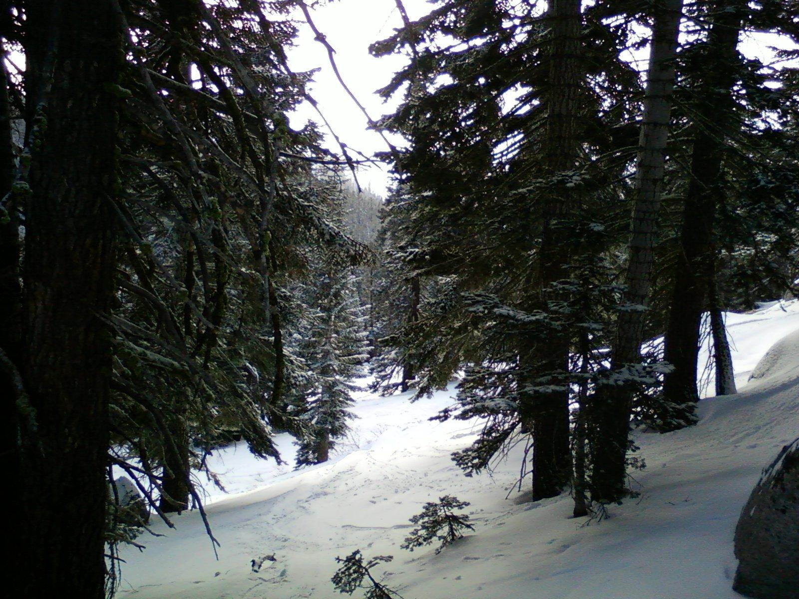 Backside at Sierra