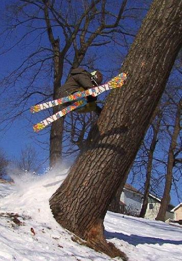Old tree hand drag