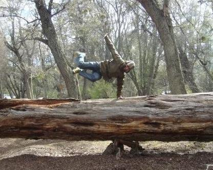 Tree Hop