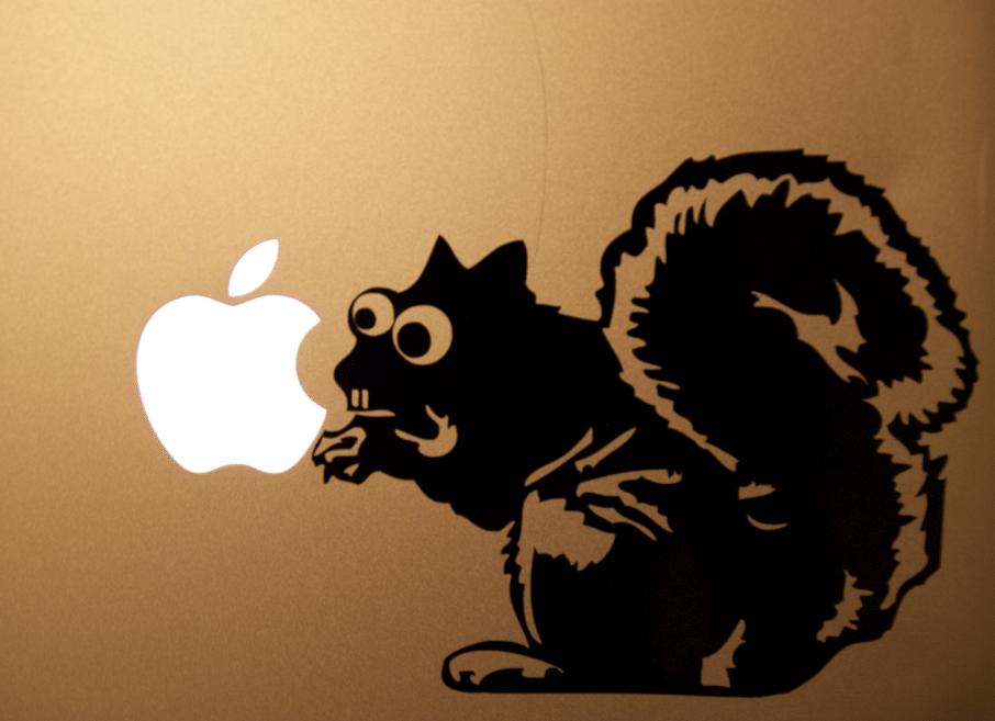 Custom Laptop Squirrel Diecut