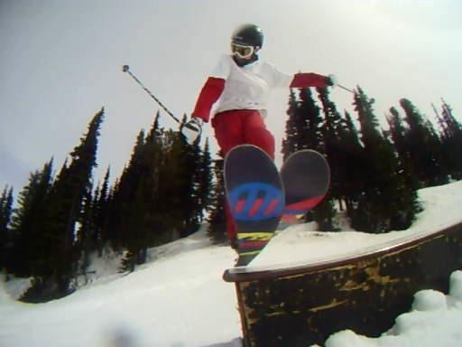 Surface Skis