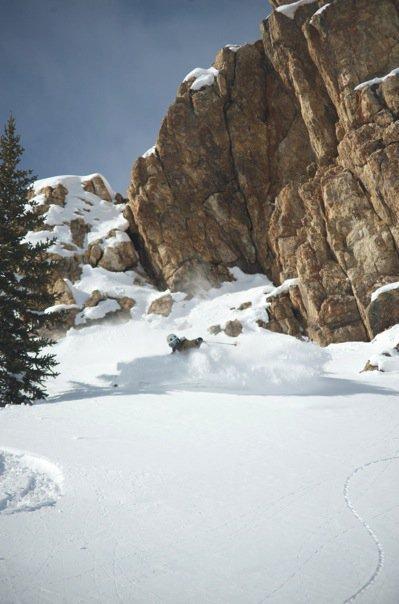 BC Breck
