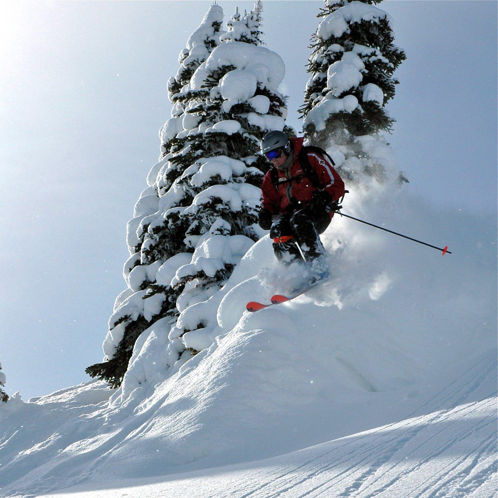 Skiing in the Monashees