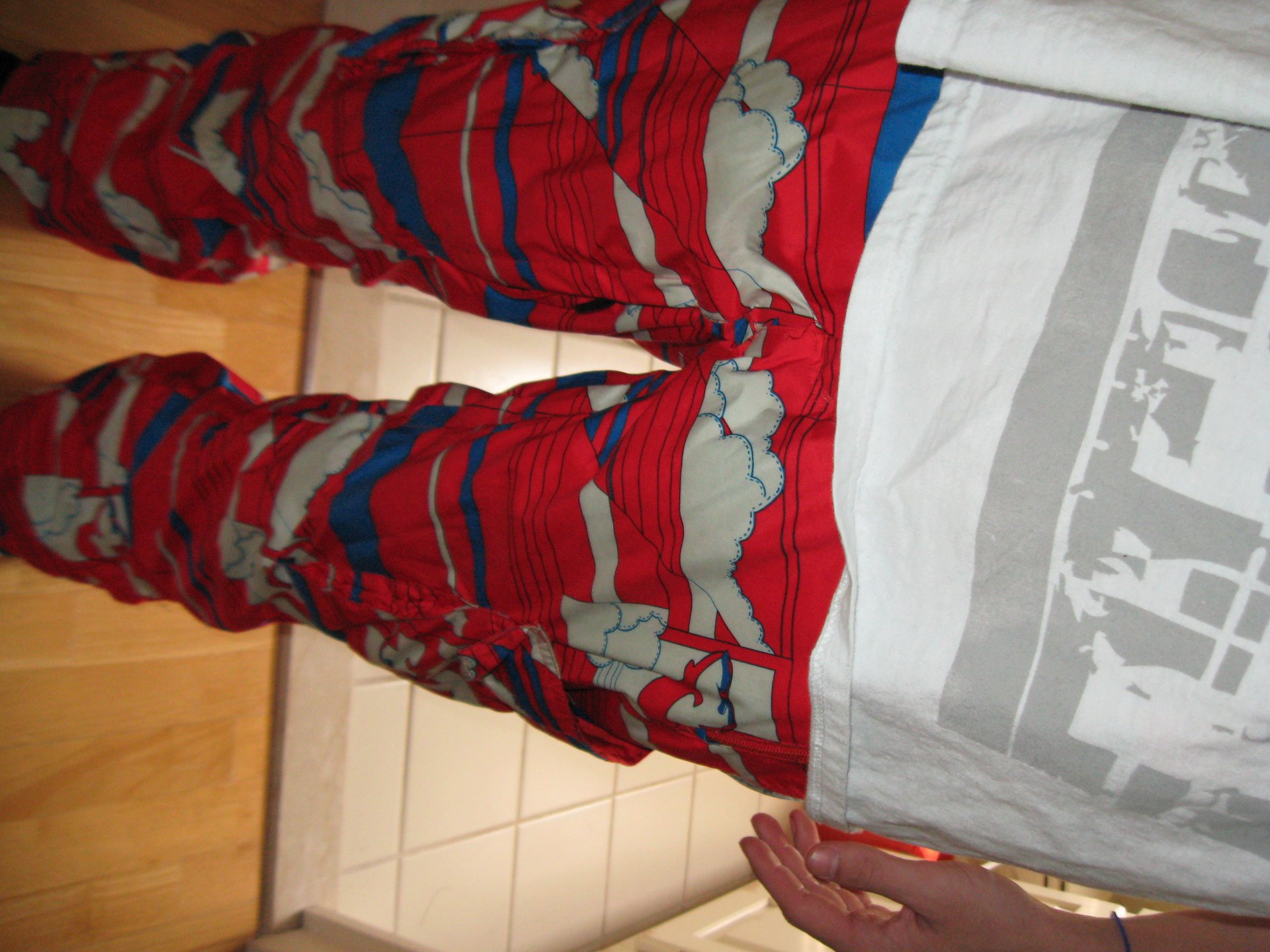 Spyder Jibber Pants