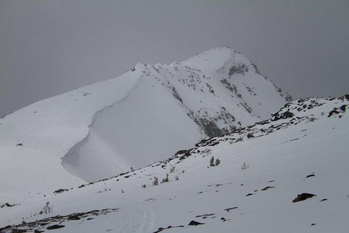 Trapper summit