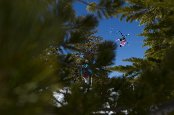 Hangin in treez