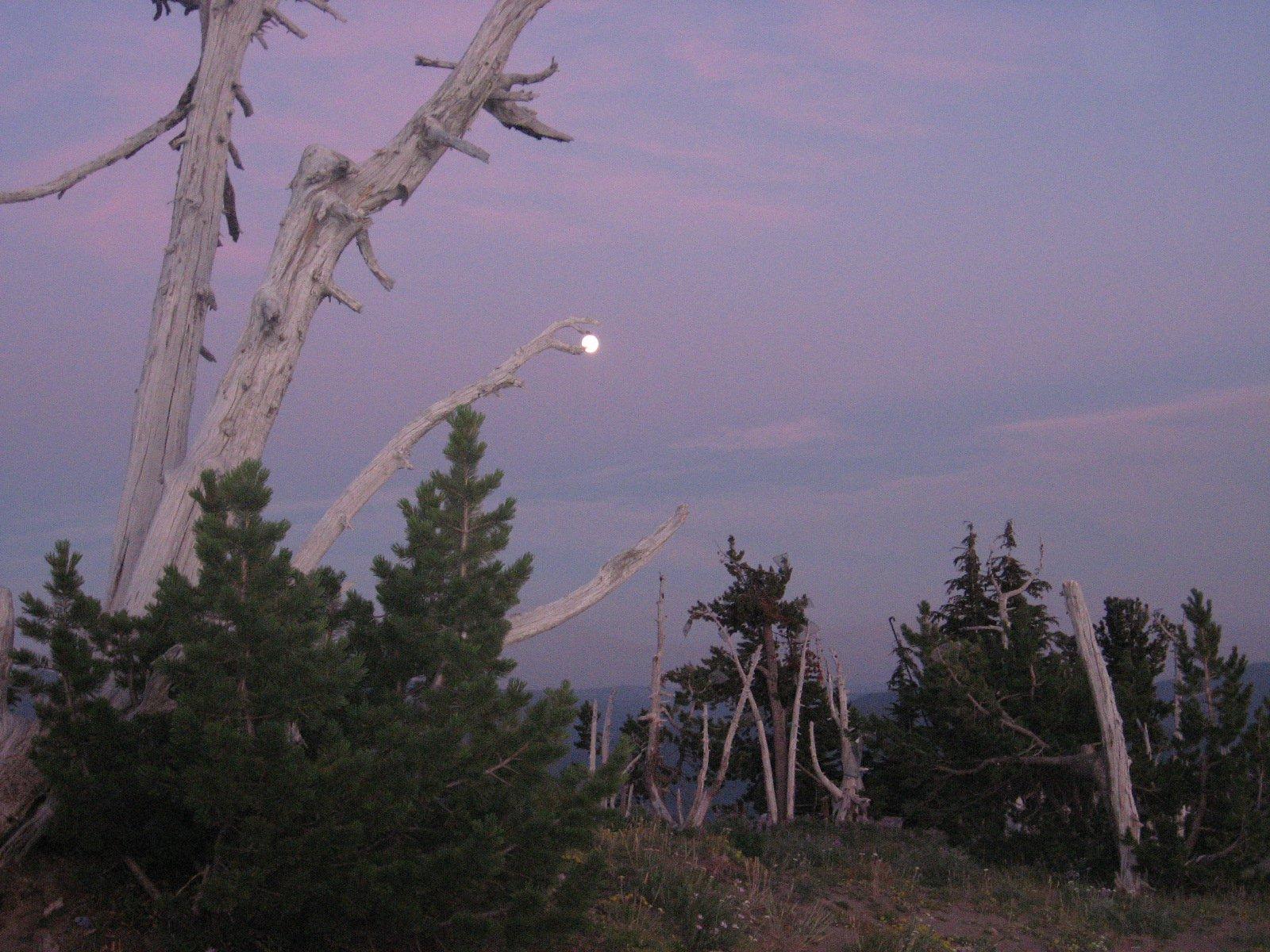 Mt. Hood moon