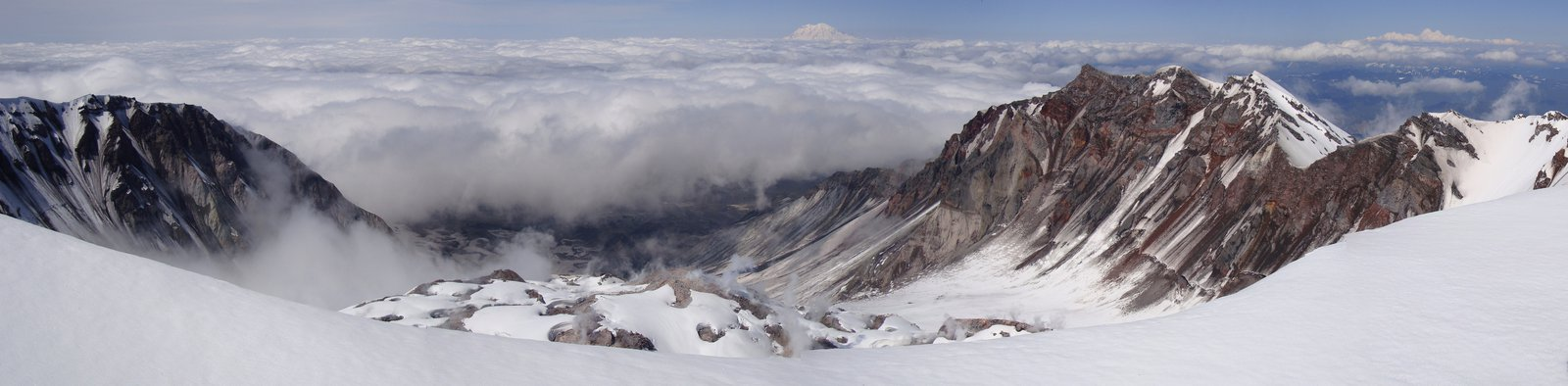 """The """"cone"""" of Helens."""