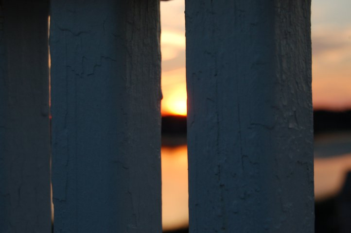 Sunset Focused