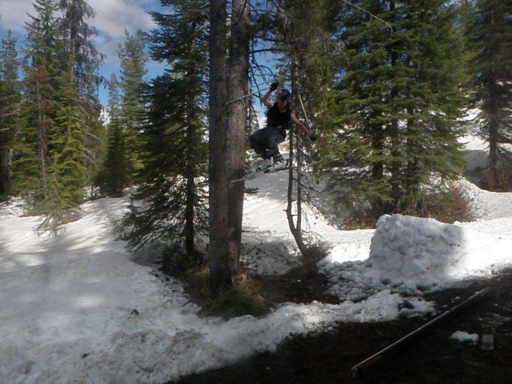 Fun tree/creek tap
