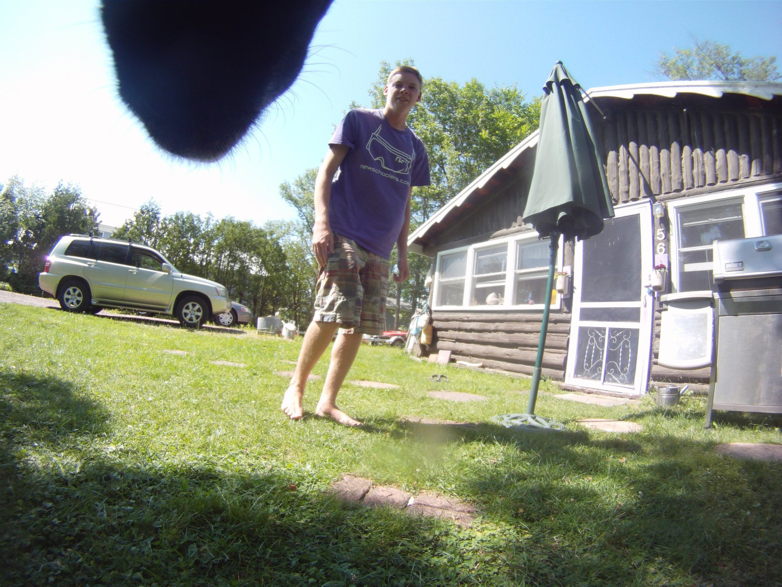 GoPro on the Pooch