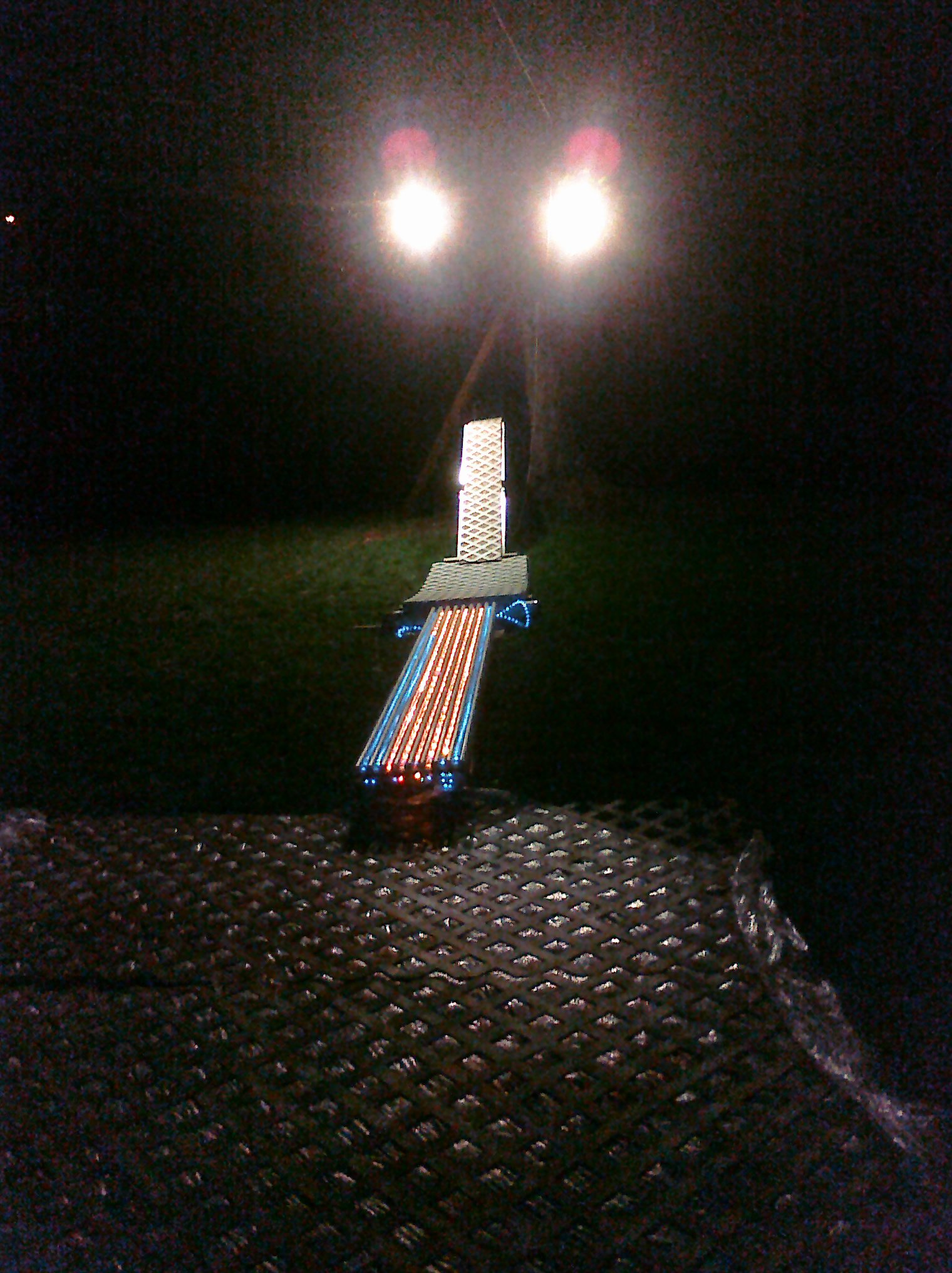 New back yard set up.