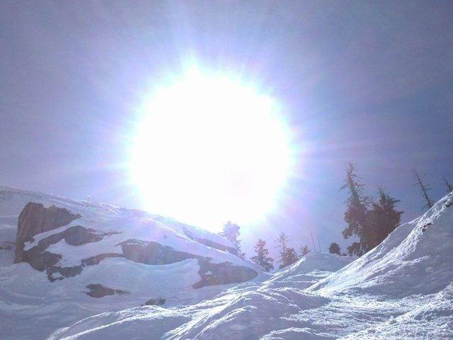 Breck