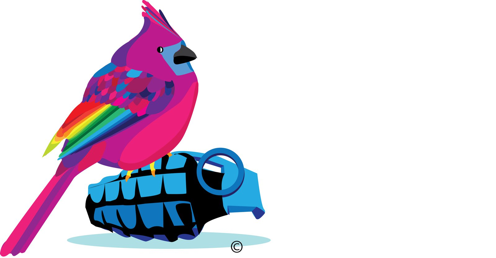 Bird o War