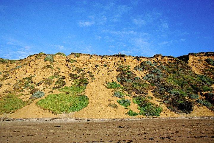 Sand Skiing - The Terrain