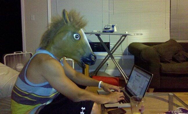 Horsey in Saga