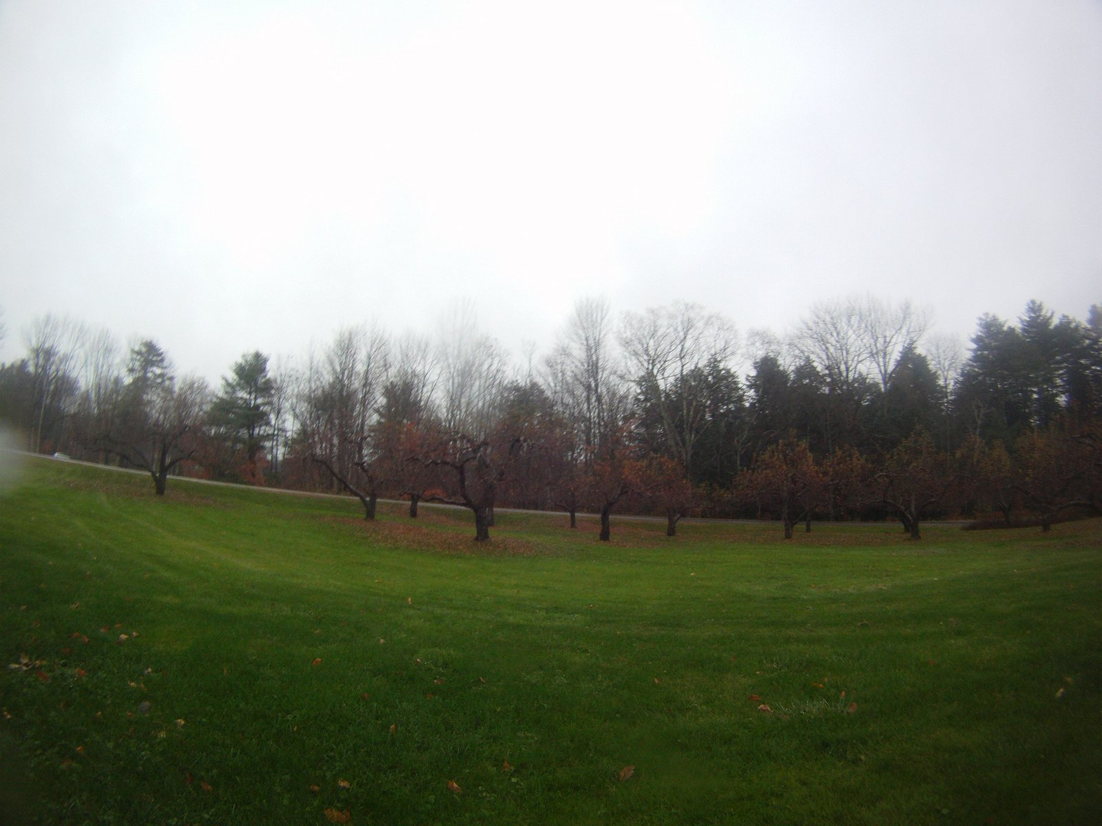 Maine November