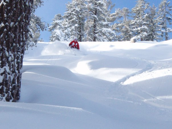 Skiing pow in tahoe
