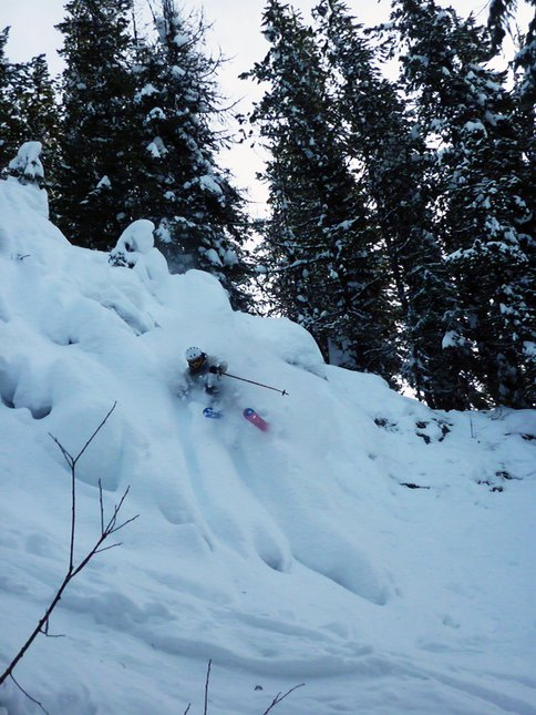 Revelstoke Pillow Slash
