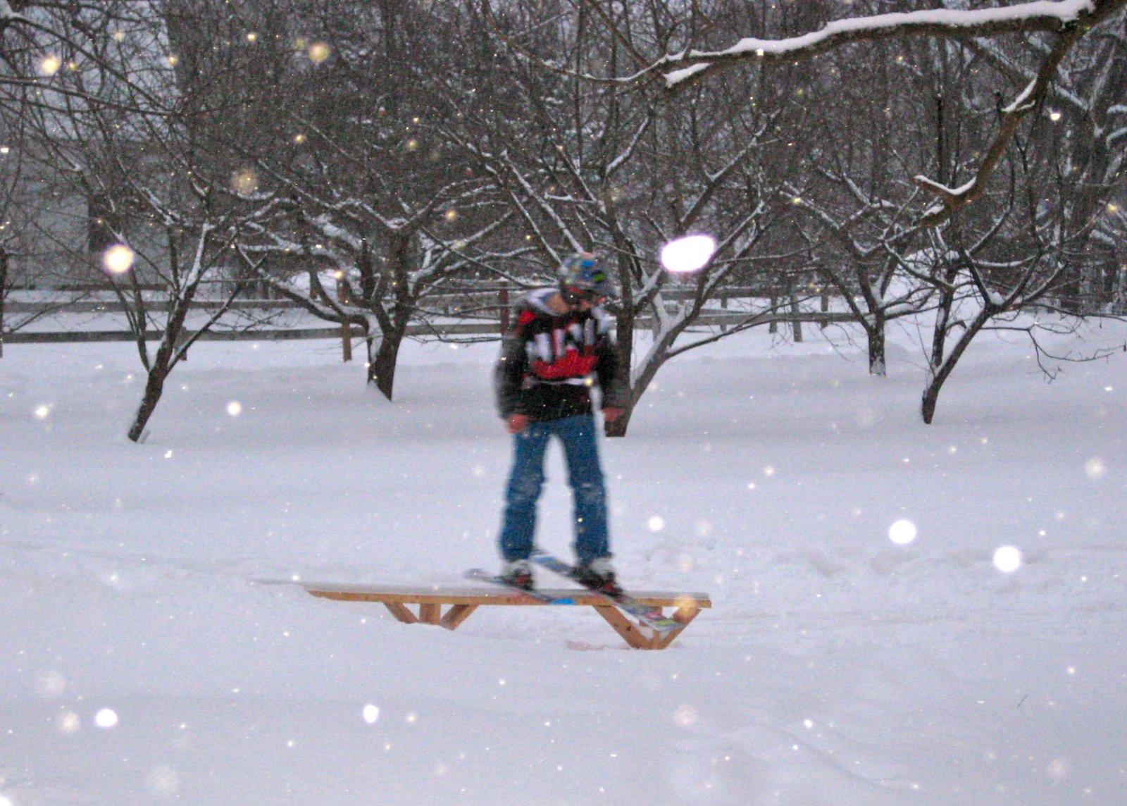 Backyard Skiing.